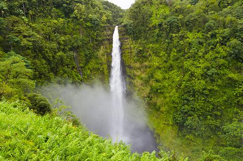 akaka-falls-2.jpg