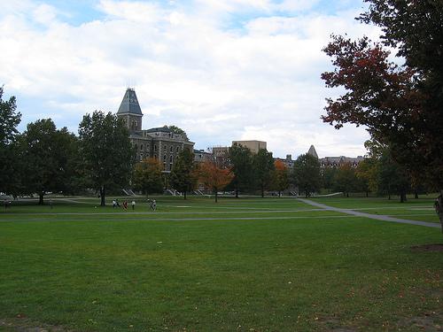 Cornell-1.jpg