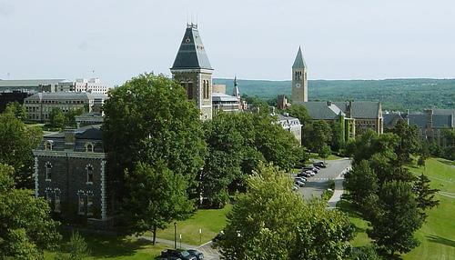 Cornell-5.jpg